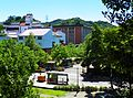 Institute of Ethnology Academia Sinica View From Hu Shih Park 20120721.jpg