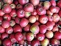Jablka (3).jpg