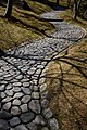 Japan Moss Path (14156130903).jpg