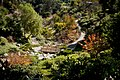 Japanese Garden at Balboa Park in San Diego (8726081405).jpg