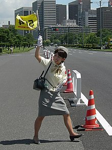 Japanese tour guide.jpg