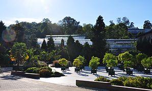 Jardin botanique Jean-Marie-Pelt — Wikipédia