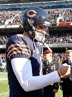 Jay Cutler (American football) - Cutler with the Chicago Bears in 2015