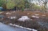 Jerusalem-Mamila-442.jpg
