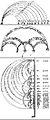 Johannes de Muris - Proportions.jpg