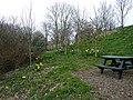 Jubilee Park, East Williamston - geograph.org.uk - 1235005.jpg