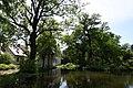 Kámoni Arborétum Szombathely Kamon Arboretum Park 11.jpg
