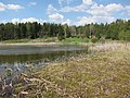 Köylijärvi, Naantali, 15.5.2010 (2).JPG