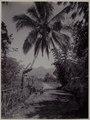KITLV - 53072 - Kurkdjian - Soerabaja - Highway at Garut - circa 1910.tif