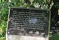 Karl Renner rose bush, Volksgarten, Vienna - inscription.jpg