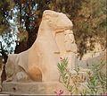 Karnak Temple - ram & flowers.jpg