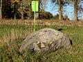 Karveliškių akmuo 2.JPG