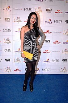 Kashmira shah colors indian telly awards.jpg