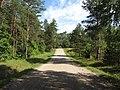 Kazokiškių sen., Lithuania - panoramio (27).jpg