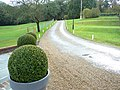 Kesgrave Hall - looking up the drive - geograph.org.uk - 1031199.jpg