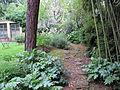 Khi florenz, giardino 09.JPG