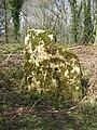 Kiftsgate Stone, near Chipping Campden - geograph.org.uk - 313088.jpg