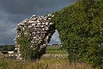 Kilcreevanty Abbey North Wall 2010 09 16.jpg