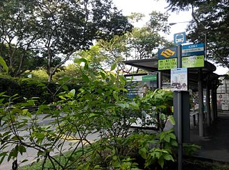 Bus transport in Singapore - The common bus stop pole was used nowadays, which is easier to change service plates around. A uniform green colour was used after 2016.