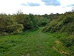 King George's Fields (Monken Hadley) 07.jpg