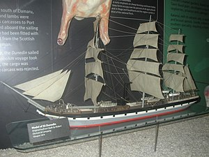 Dunedin (ship) - Model of the Dunedin in the Otago museum.