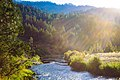 Klamath River in Siskiyou County, California (40521984611).jpg