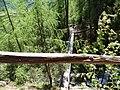 Klettersteig Lehner Wasserfall - panoramio (1).jpg