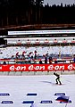 Kontiolahti Biathlon World Cup 2014 17.jpg