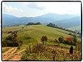 Kozárikove skalky (Janky skalky) - panoramio.jpg