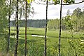 Krievupe, Garkalnes pagasts, Garkalnes novads, Latvia - panoramio (3).jpg