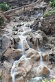 LORO Parque cascade - panoramio.jpg