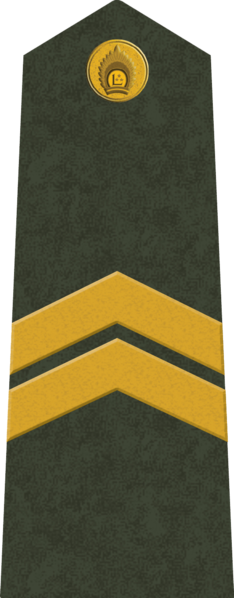 File:LV-Army-OR4.png