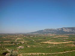 La Rioja Alavesa..jpg