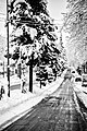 Lahijan in winter.jpg