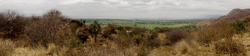 Lake Manyara panoramic.jpg