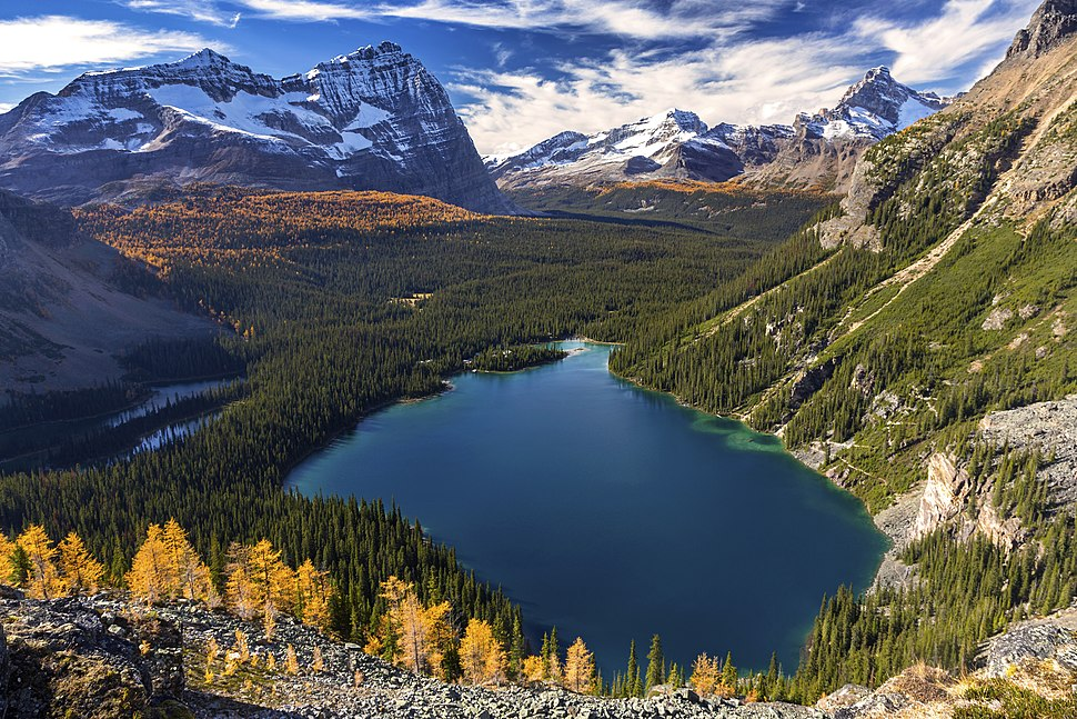 Lake O'Hara Yoho National Park