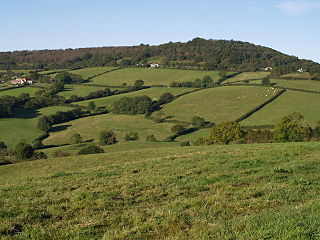Lamberts Castle hillfort in Dorset