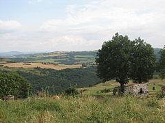 Landscape-IMG 6910.JPG