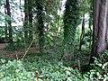 Landschaftsschutzgebiet Strothheide Melle Datei 11.jpg