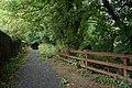 Lane at Clare Glen near Tanderagee - geograph.org.uk - 529180.jpg
