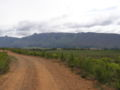 Langeberg MountainsPA020125.JPG