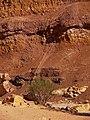 Leak, Ardon Creek, Ramon Makhtesh, Negev, Israel זליגה, נחל ארדון, מכתש רמון, הר הנגב - panoramio.jpg