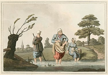 Print from Costumes of Yorkshire 1814 showing three women searching for leeches in a pond