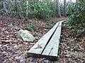 Len foote hike inn trail amicalola falls ga - panoramio (3).jpg