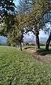Leppersdorf - panoramio.jpg