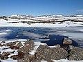 Les étangs de l'Anse à Pierre en dégel.jpg