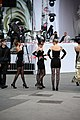 Life Ball 2014 red carpet 004.jpg
