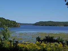 Limerick Lake.jpg