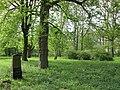 Lindener Bergfriedhof - Hannover-Linden Stadtfriedhof Am Lindener Berge - panoramio (13).jpg
