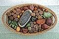 Lithops, living stones, at Nuthurst, West Sussex, England 1.jpg